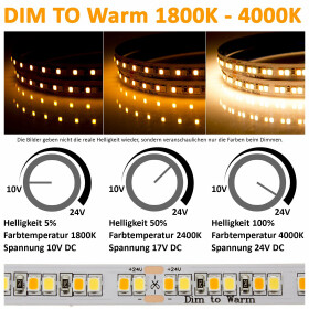 DEMODU® PREMIUM 24V LED Streifen dim to warm 5m 192...