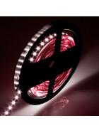 DEMODU® Premium 12V LED Streifen Speziell Fleischwaren Fisch Fleisch Licht Rot Pink Rosa extra Rotanteil