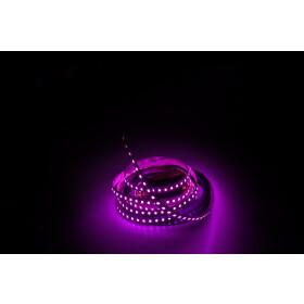 DEMODU® Pro 12V pink/lila 16W/m 10mm SMD2835 120/m...