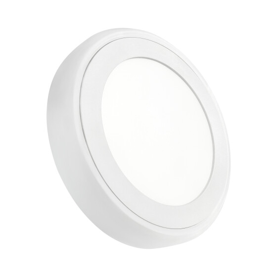 ALGINE  ECO II LED ROUND  230V 6W IP20  CW CEILING PANEL - SURFACE
