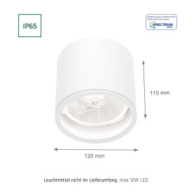CHLOE AR111 GU10 IP65 round white